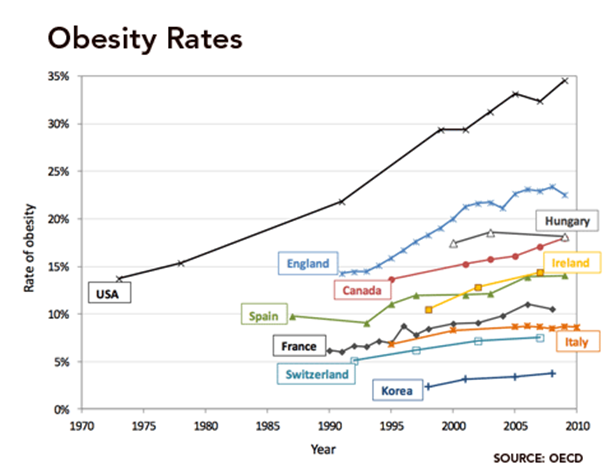 Sugar, Honey, Honey – the weighty problem of obesity and substitution